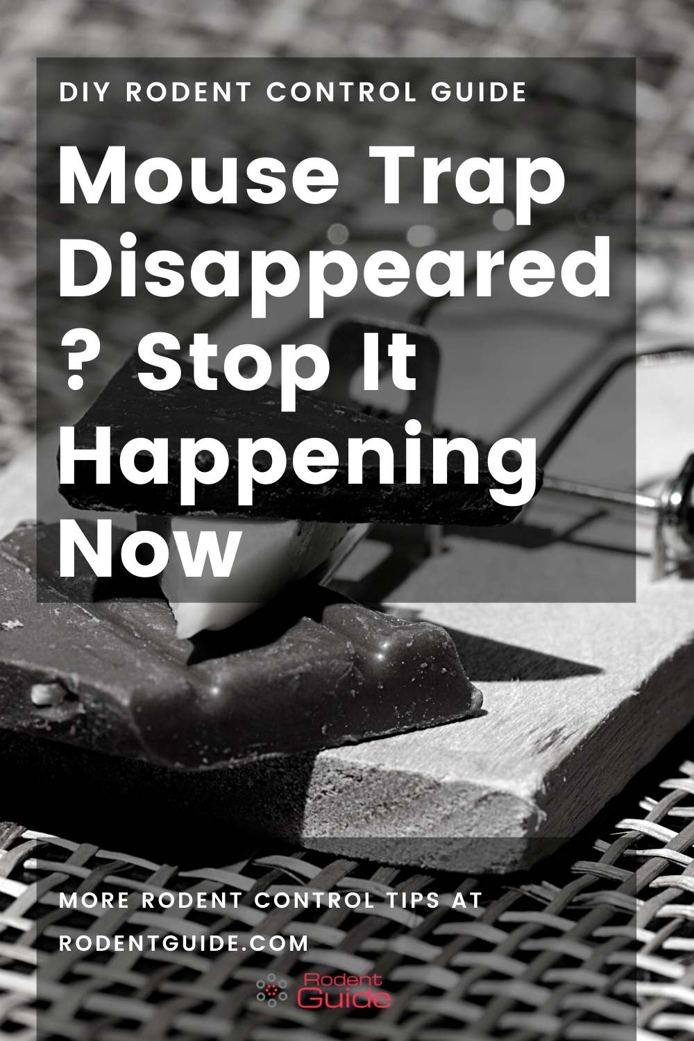 Mouse Trap Disappeared
