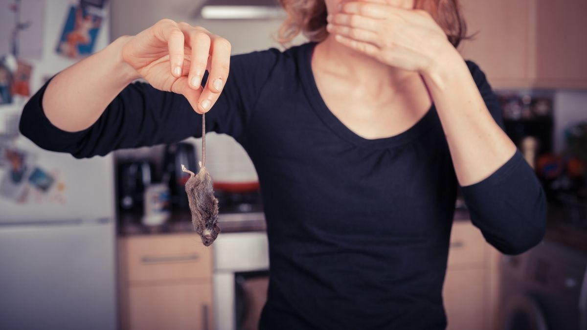 woman holding a dead mouse