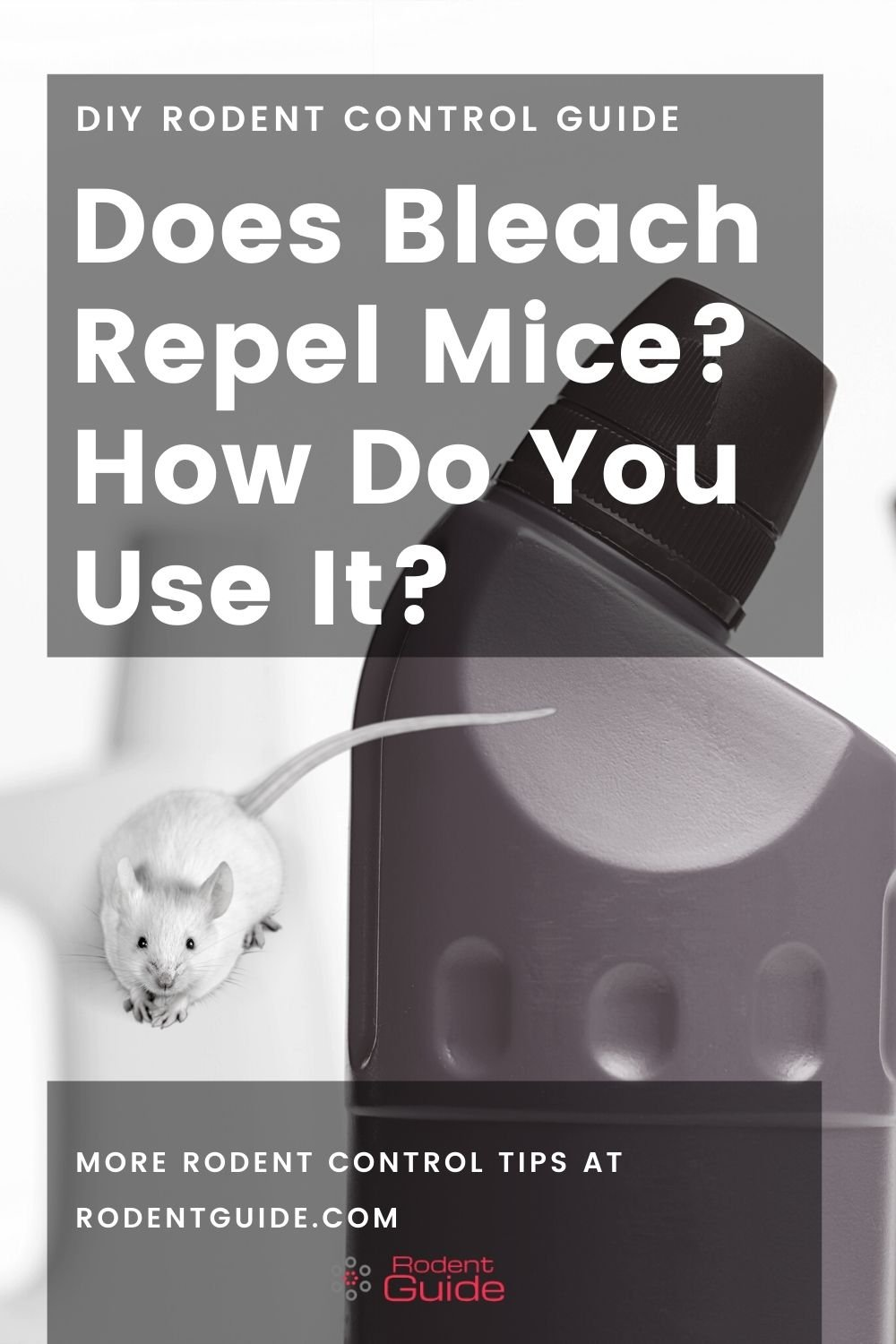 Does Bleach Repel Mice How Do You Use It