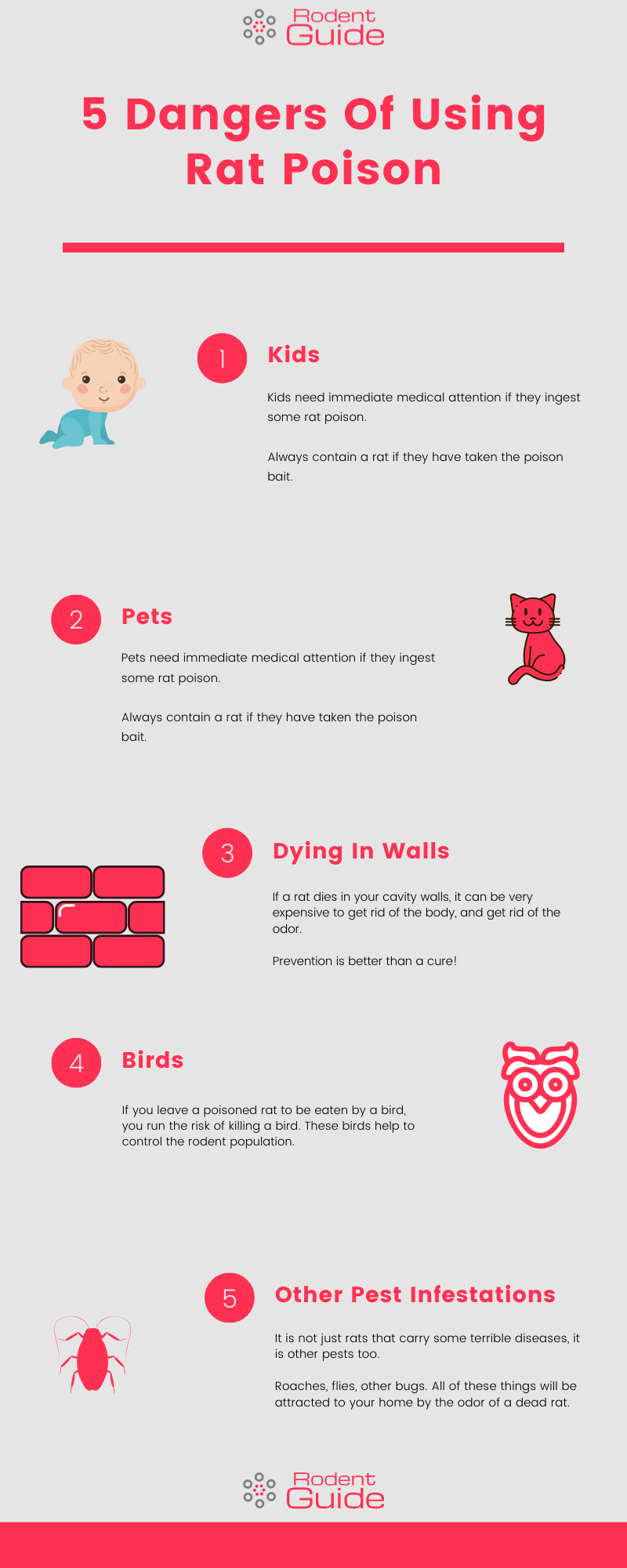 5 Dangers Of Using Rat Poison Infographic