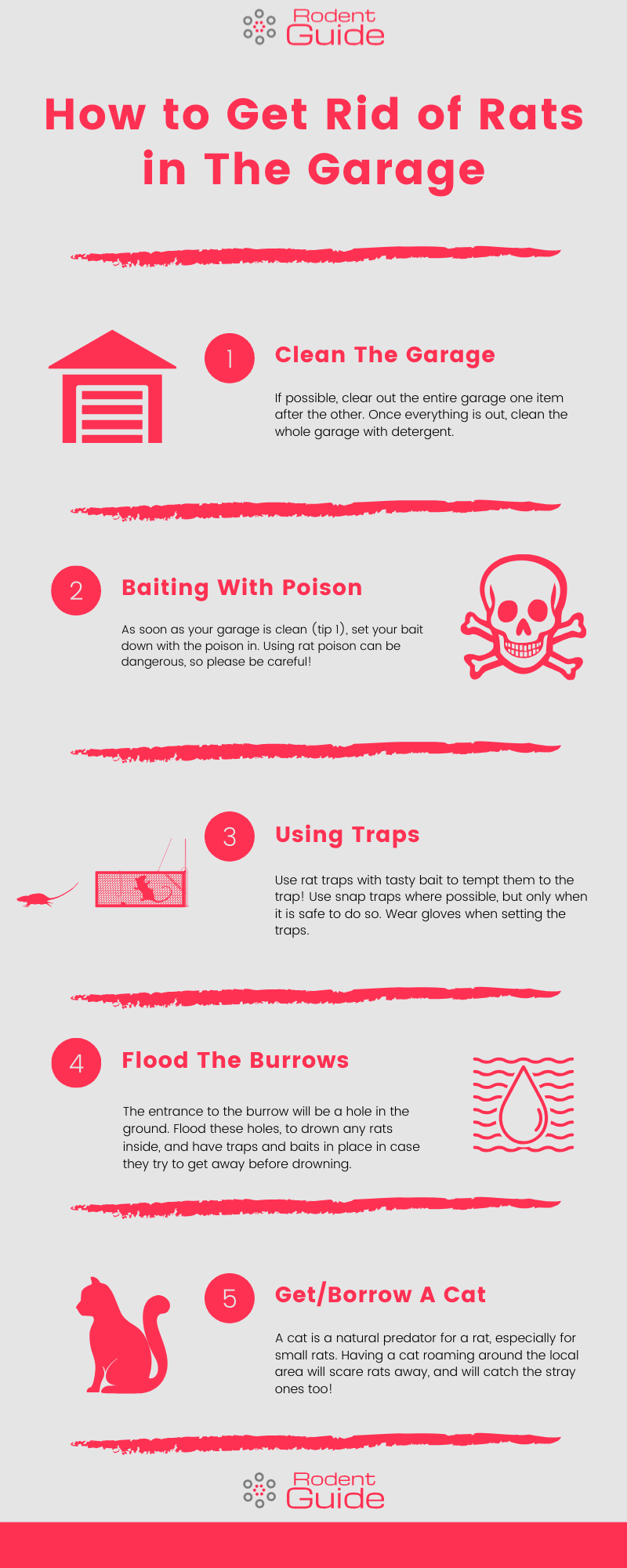 How to Get Rid of Rats in The Garage Infographic