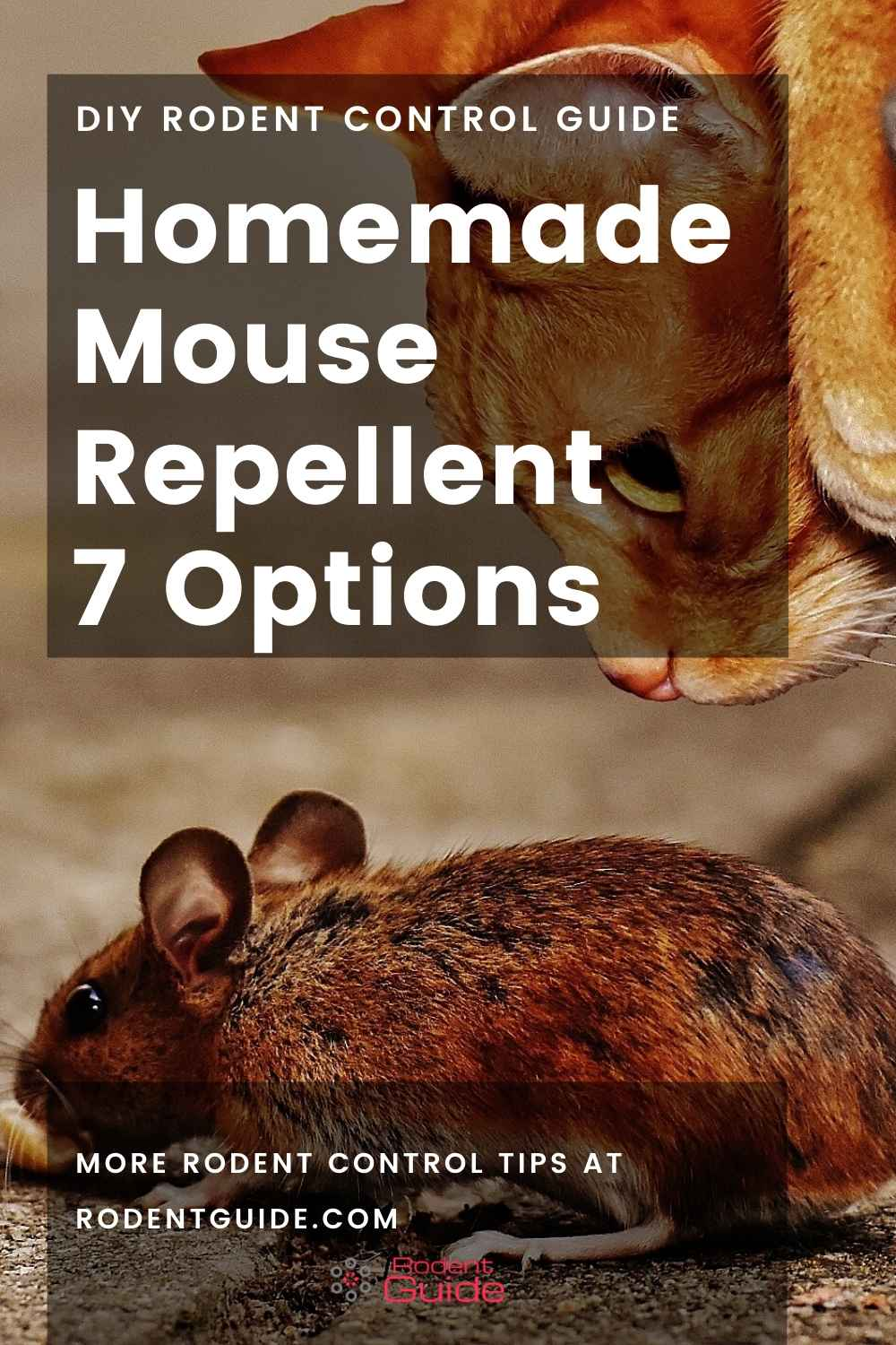 Homemade Mouse Repellent 7 options