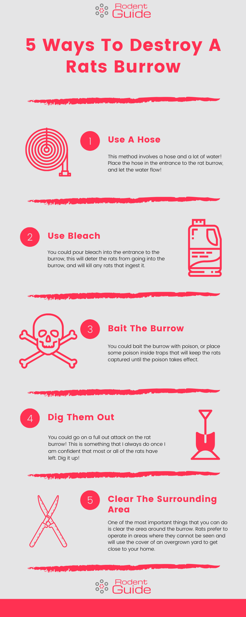 Ways To Destroy A Rats Burrow Infographic
