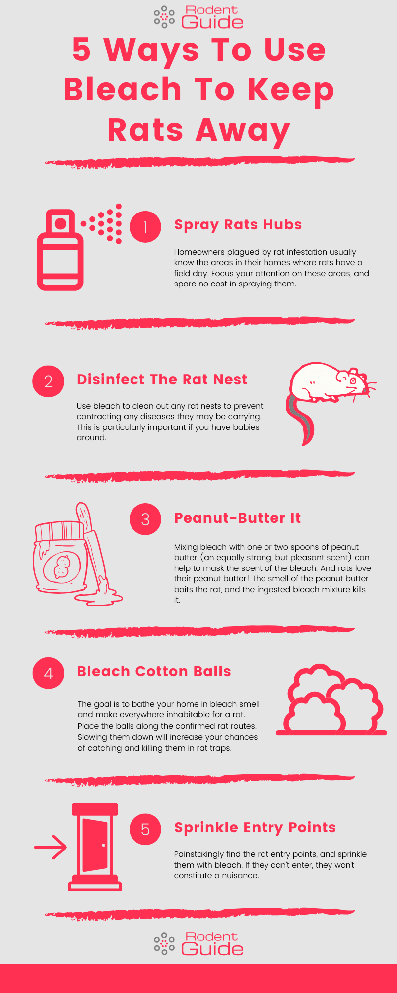 5 Ways To Use Bleach To Keep Rats Away Infographic