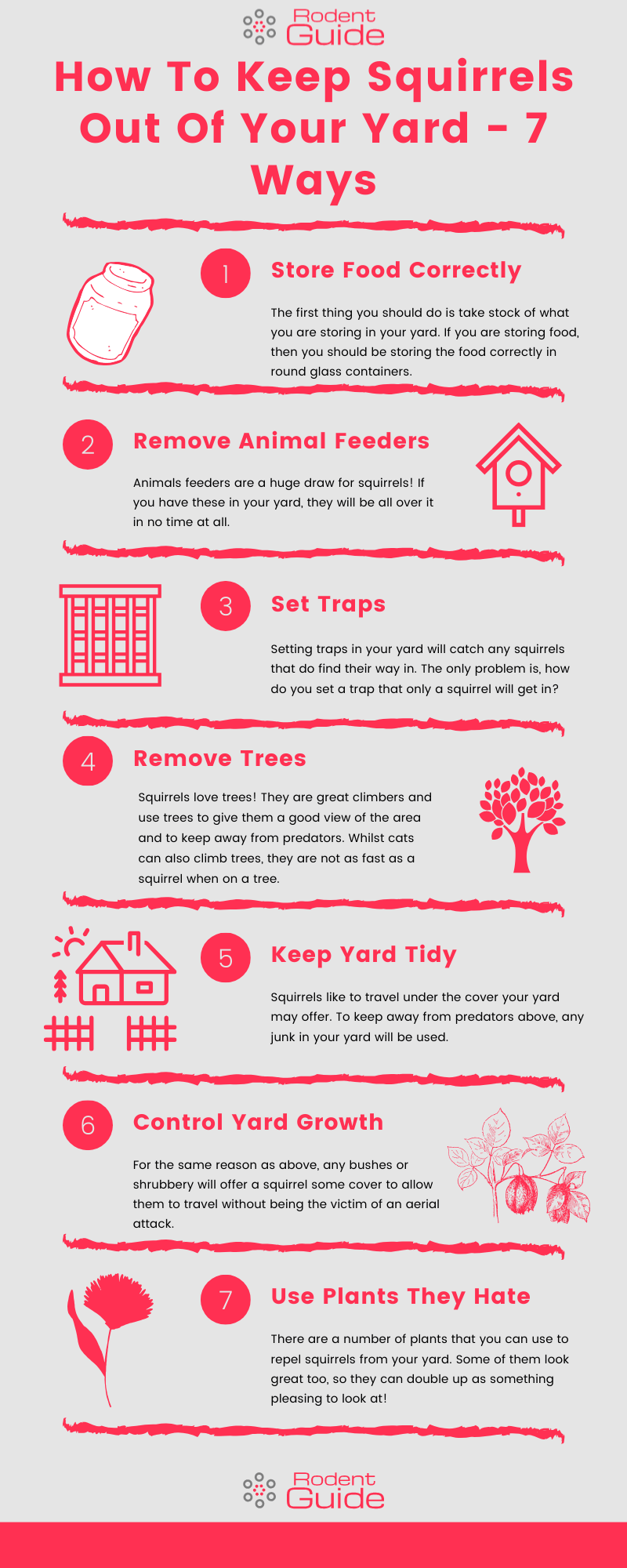How To Keep Squirrels Out Of Your Yard Infographic