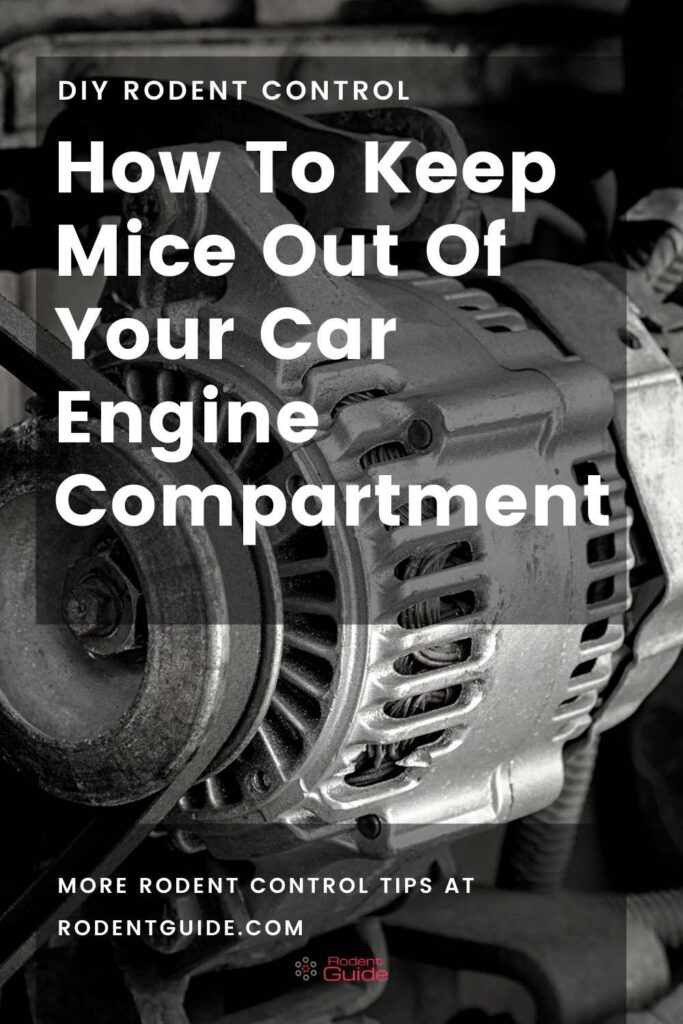 How To Keep Mice Out Of Your Car Engine Compartment