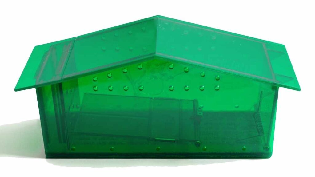 green plastic mouse trap